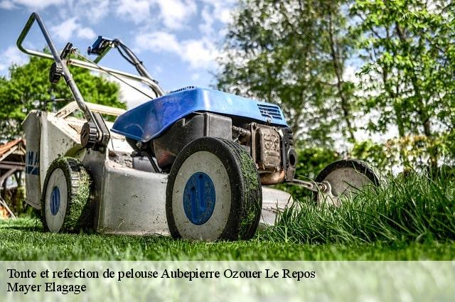 Tonte et refection de pelouse  aubepierre-ozouer-le-repos-77720