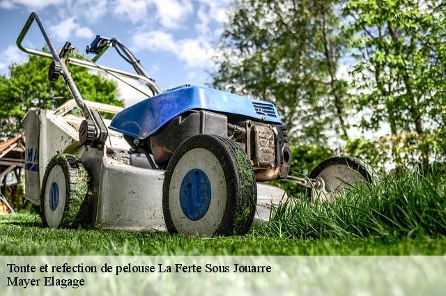Tonte et refection de pelouse la ferte sous jouarre t l for Tarif tonte gazon par paysagiste