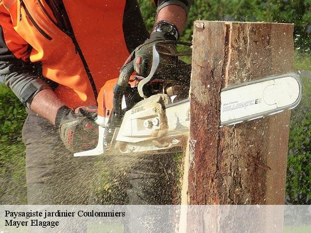 Paysagiste jardinier  coulommiers-77120 Mayer Elagage